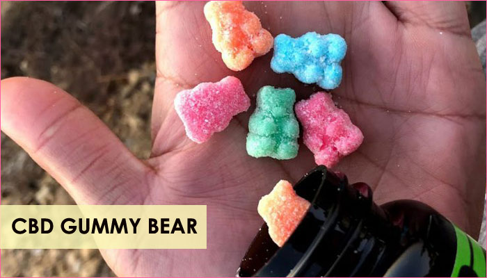 Best CBD Gummy Bear