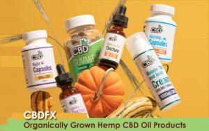 CBDfx products review